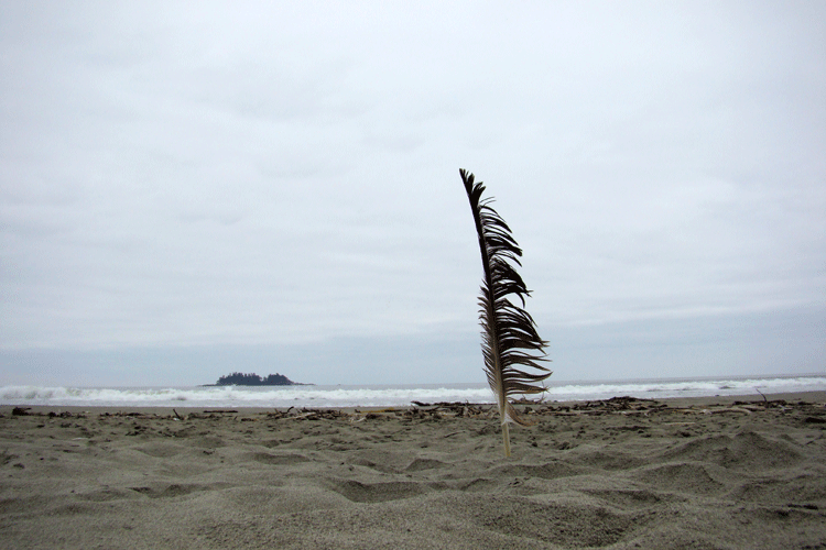 Tofino, BC, Canada © 2007 Ken Chow Photography