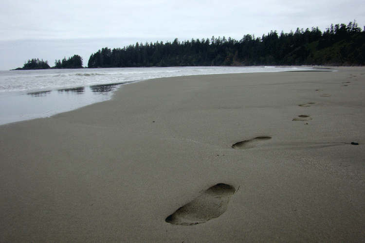 Tofino, BC, Canada©2007 Ken Chow Photography